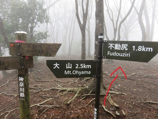 赤矢印方面に進むと三峰山