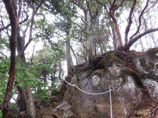 三峰山周辺の登山道