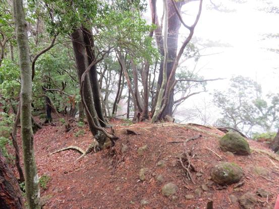 鍋嵐の山頂の様子