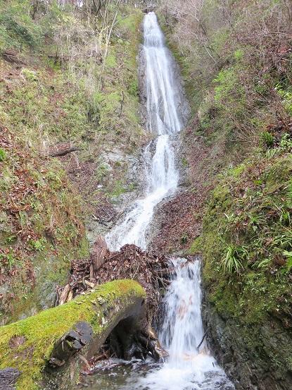 丹沢の中でも好きな名瀑