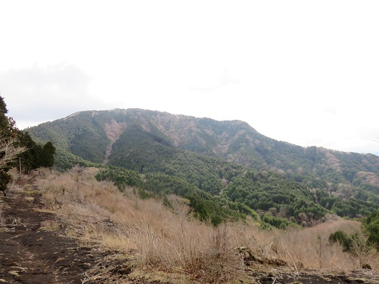 不老山景色