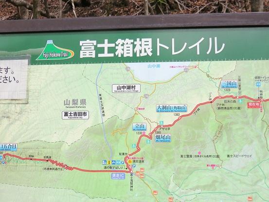 富士箱根トレイル