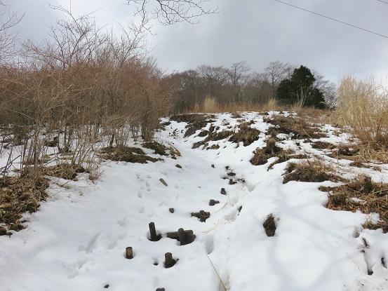 積雪がモリモリで