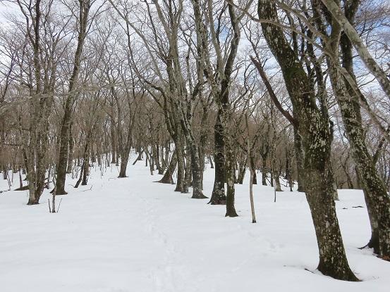 三国山(標高1,320m)から続く「三国山ハイキングコース」