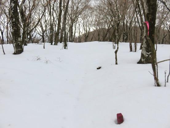 三国山周辺は、かなり雪