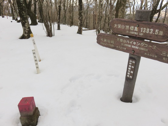 大洞山(角取山)標高1,383m