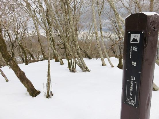 畑尾山(標高1,365m)