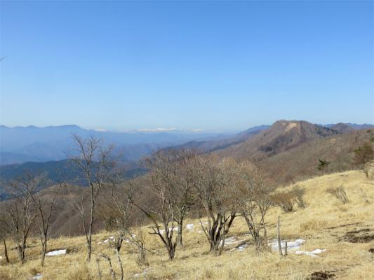 鷹ノ巣山周辺