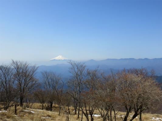 鷹ノ巣山周辺富士山の絶景スポット