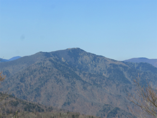 雲取山が見えてた