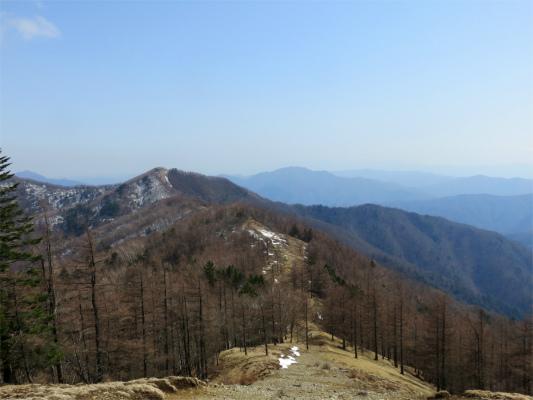 雲取山石尾根の稜線