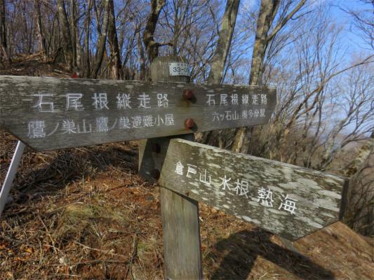 鷹ノ巣山避難小屋から水根沢林道を経由