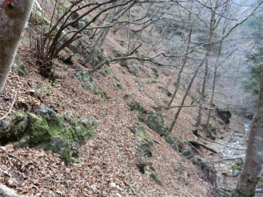 水根沢林道滑落に要注意