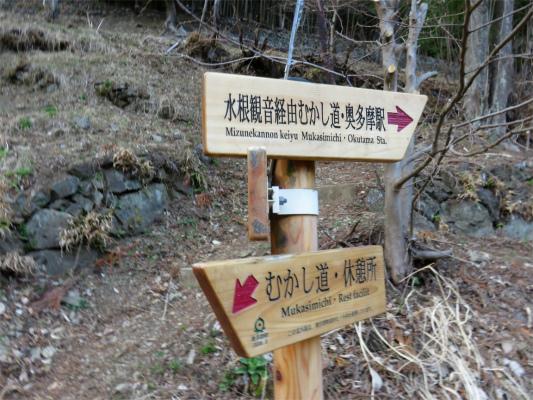 水根沢林道の登山口