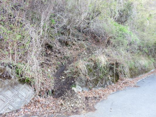 舗装された林道と交差
