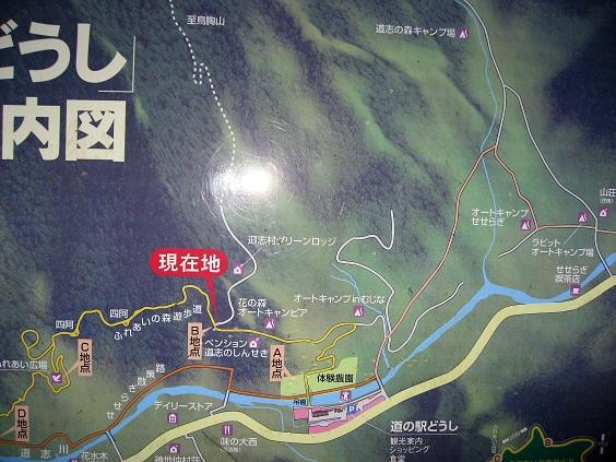 花の森オートキャンピア(キャンプ場)