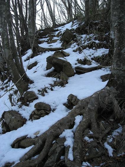 鳥ノ胸山登山道
