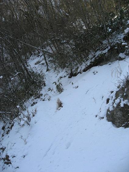 大界木山登山口不明瞭