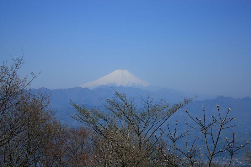 陣馬山富士山