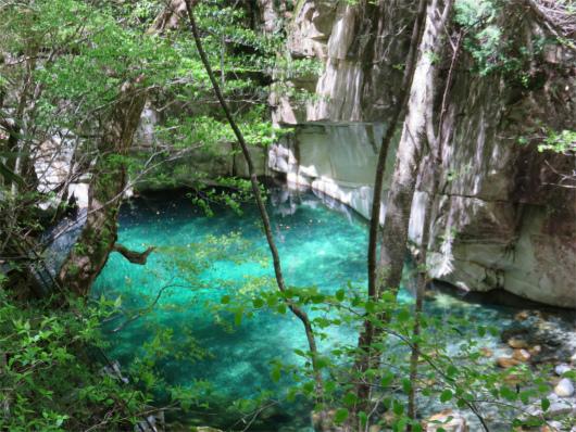 釜滝と新緑