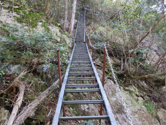 一番長い梯子