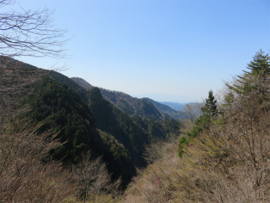 弥山川の景色