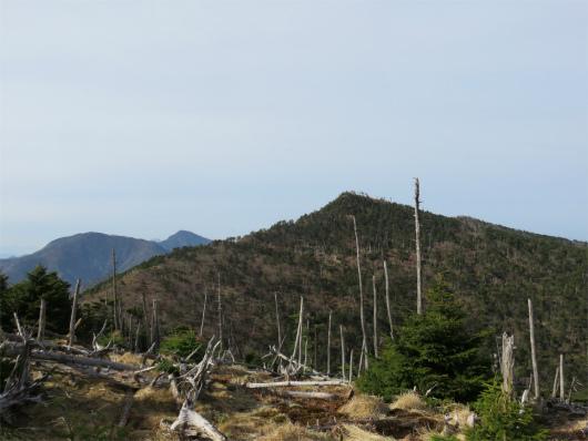弥山方面から見る八経ヶ岳