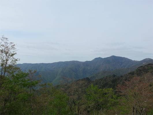 振り返っての八経ヶ岳・弥山