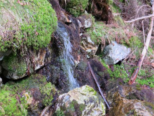 小笹宿の水場