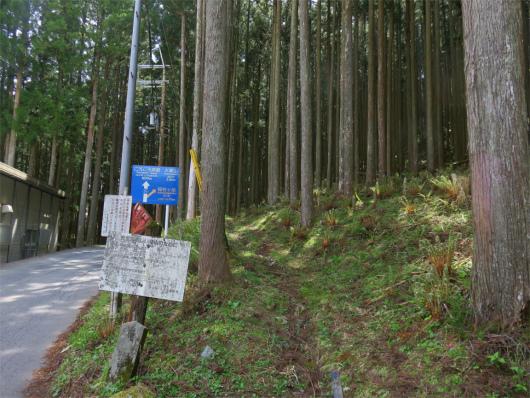 別のアングル稲村ヶ岳登山口