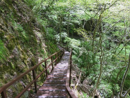 みたらい渓谷の遊歩道
