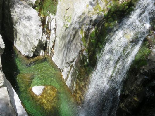 アップのみたらい滝