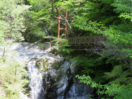みたらい渓谷の散策コース