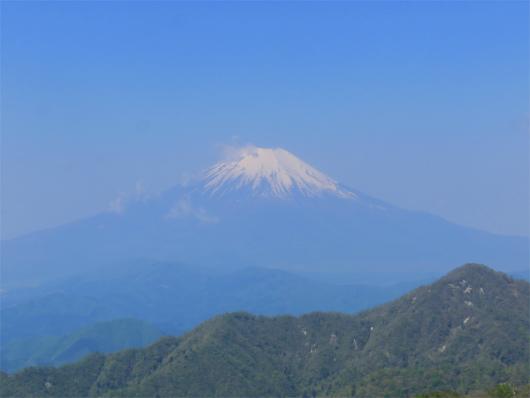 丹沢山から見る富士山