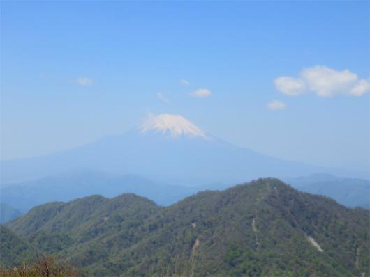 蛭ヶ岳から見る富士山