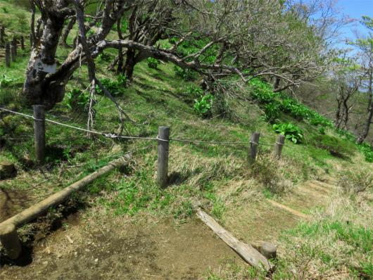 不動ノ峰休憩所の近くにある水場への分岐