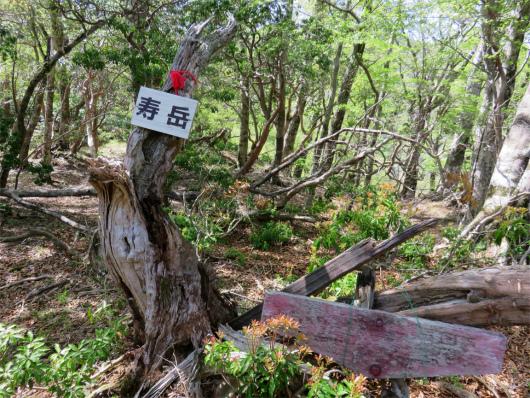 寿岳の山頂