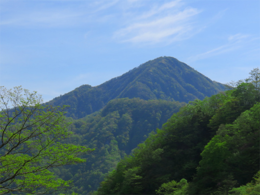源蔵尾根から蛭ヶ岳