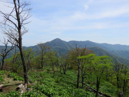 青ヶ岳山荘からの景色