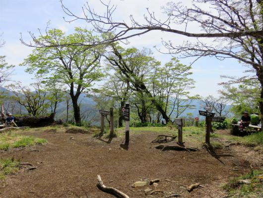 檜洞丸の山頂