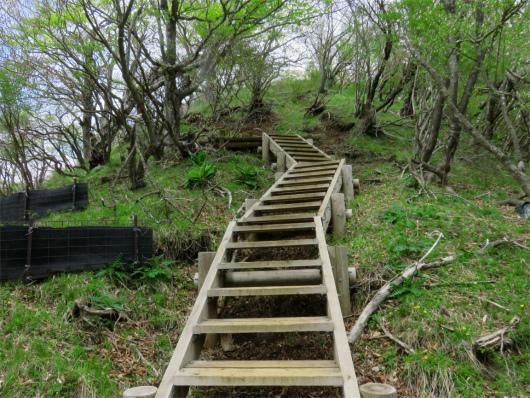 アップの階段