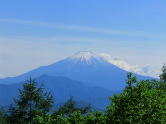 扇山の山頂から見る富士山