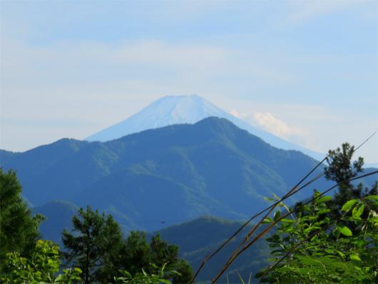舗装路富士山