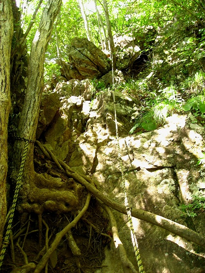 杓子山の直下縄場