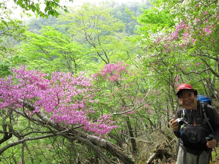 登山者と花