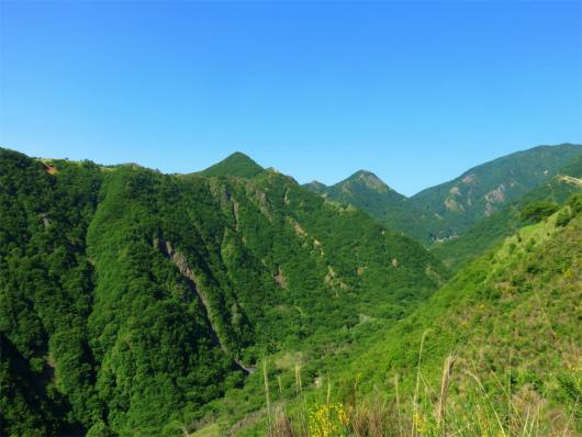 足尾銅山の山並み