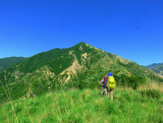 横場山の山頂(1,017m)