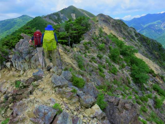 足尾銅山の鉱毒の影響で木々が枯れている