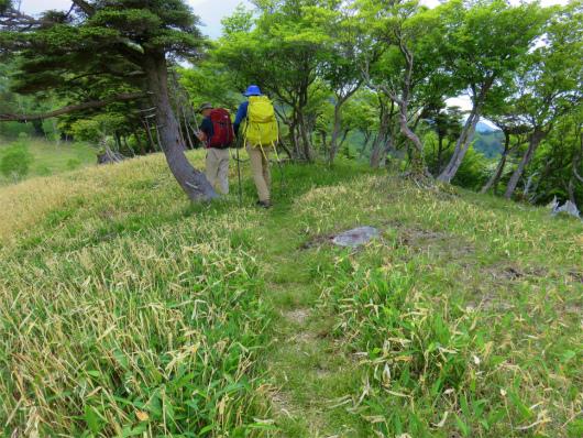 オロ山への登山道