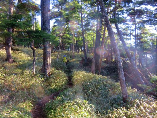 庚申山近く雰囲気の良い道
